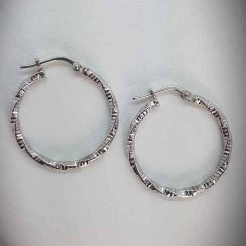 Hoops Sterling Silver Earrings